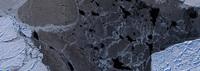 Mosaico de hielo marino