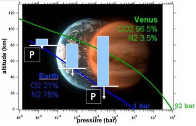 The unexpected temperature profile of Venuss atmosphere