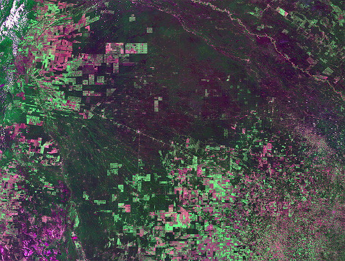 False colour Proba-V image from 4 February 2014 showing deforestation in Argentina (Photo:ESA/VITO)