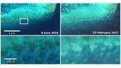 Sentinel-2_captures_coral_bleaching_small.jpg