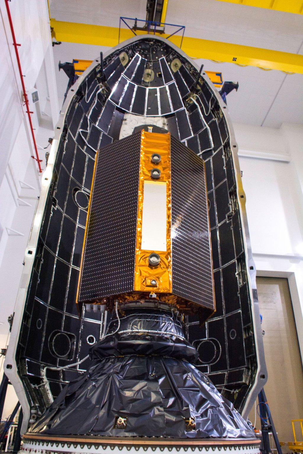 Copernicus Sentinel-6 Michael Freilich in its fairing
