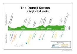 Dorset4