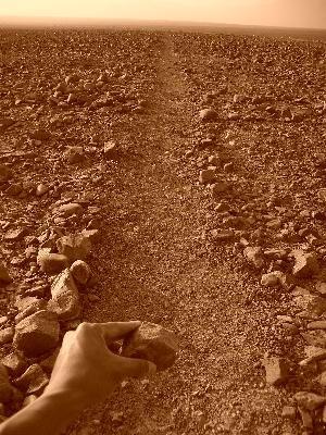 Nazca9