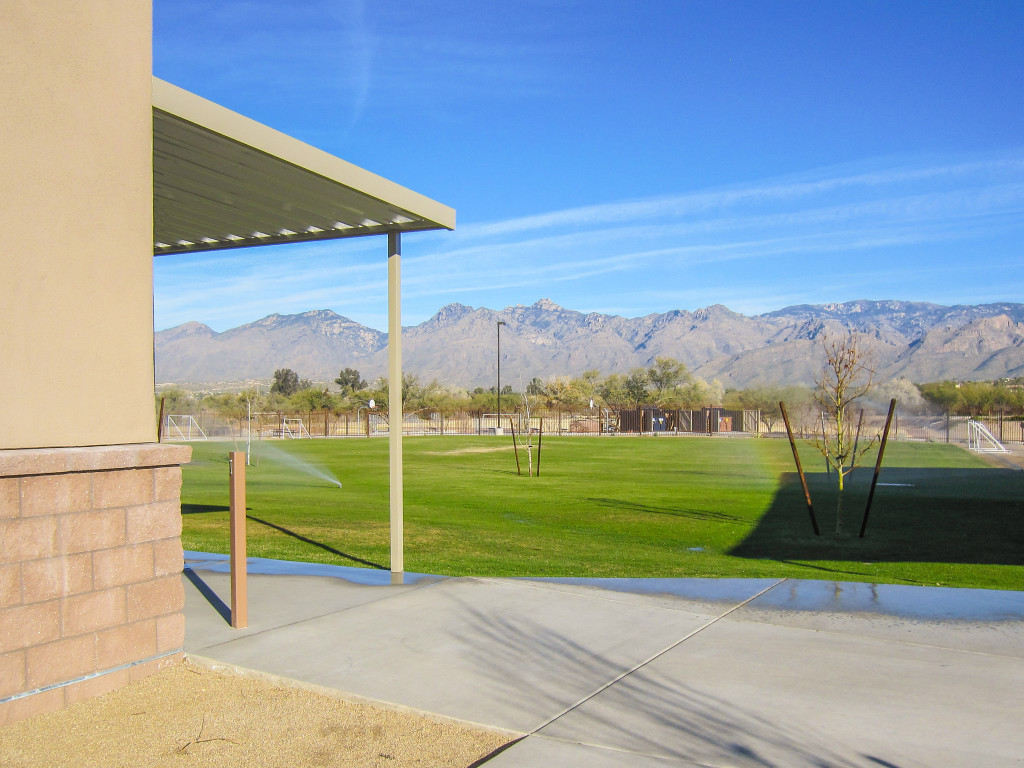 Landscape Design Yuma Az