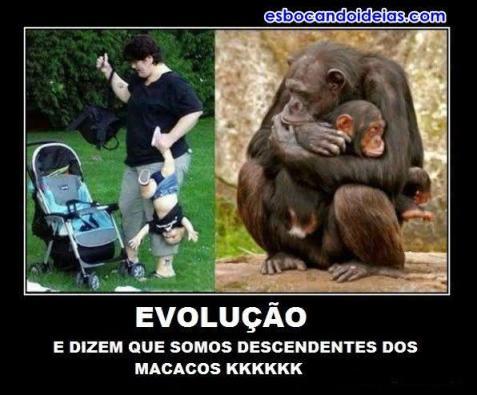 Evolução é isso mesmo?