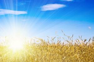 Os 7 segredos para se ter uma vida abundante