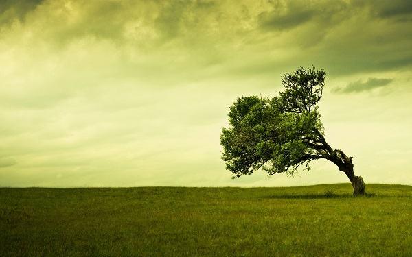 5 coisas que não deixam sua vida com Deus avançar