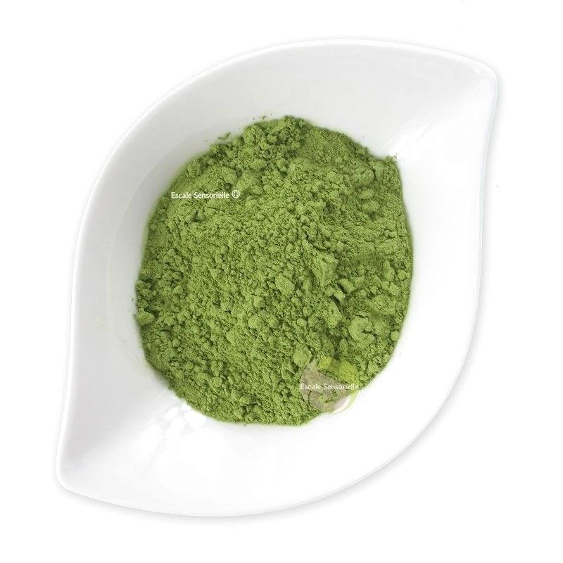 matcha the vert japonais 100g
