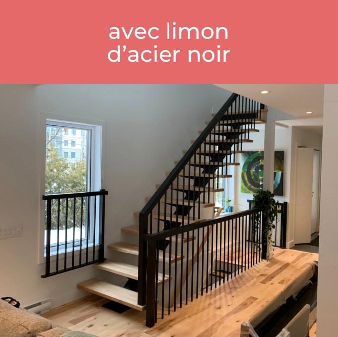 Escalier avec limon d'acier noir