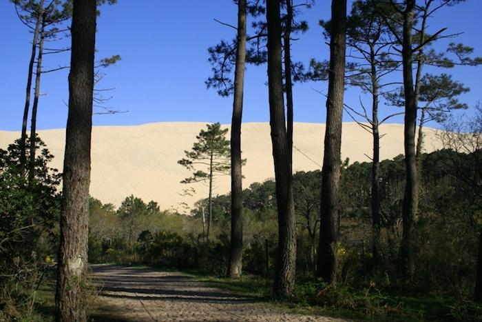 Dune Du Pilat Escapade Nature Sans Voiture