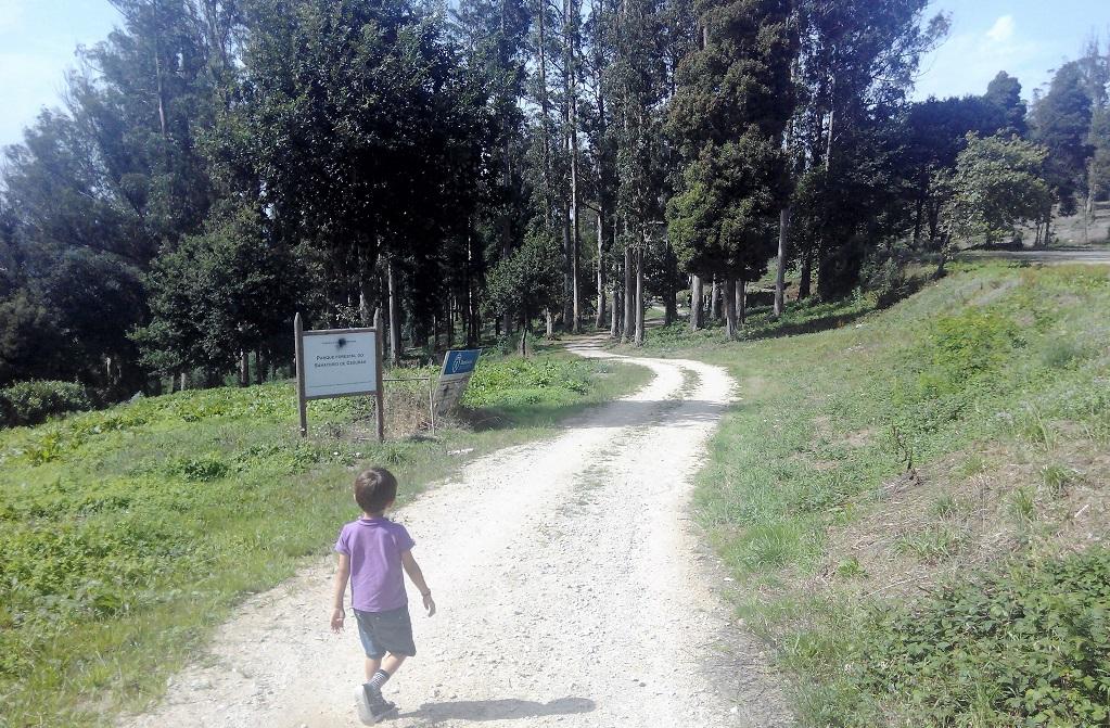 Mini-rutas: el hospital de Cesuras y su parque forestal