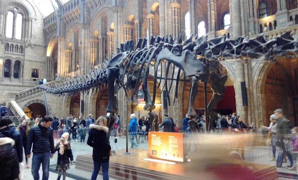 El Museo de Historia Natural de Londres, con niños