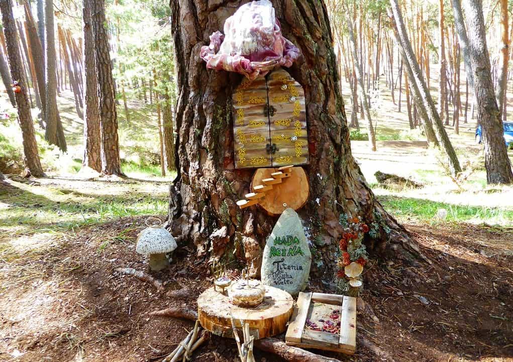 Magia y gnomos: un bosque para ir con niños