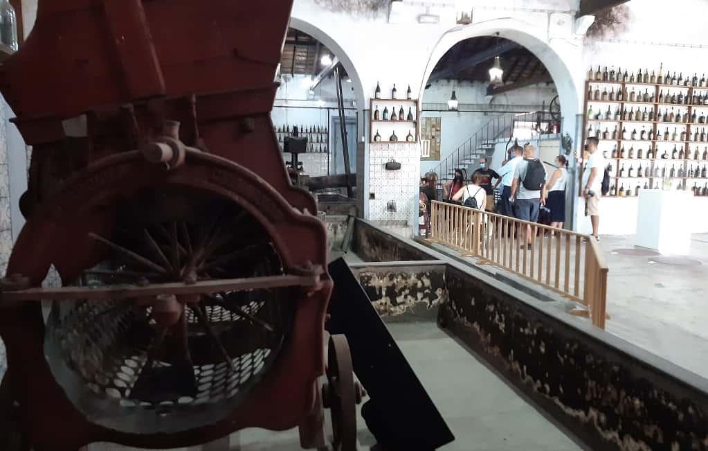 El Museo Nacional del Vino de Alcobaça