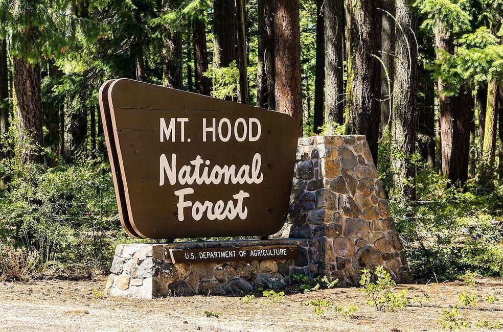 Mt Hood National Forest Sign Oregon