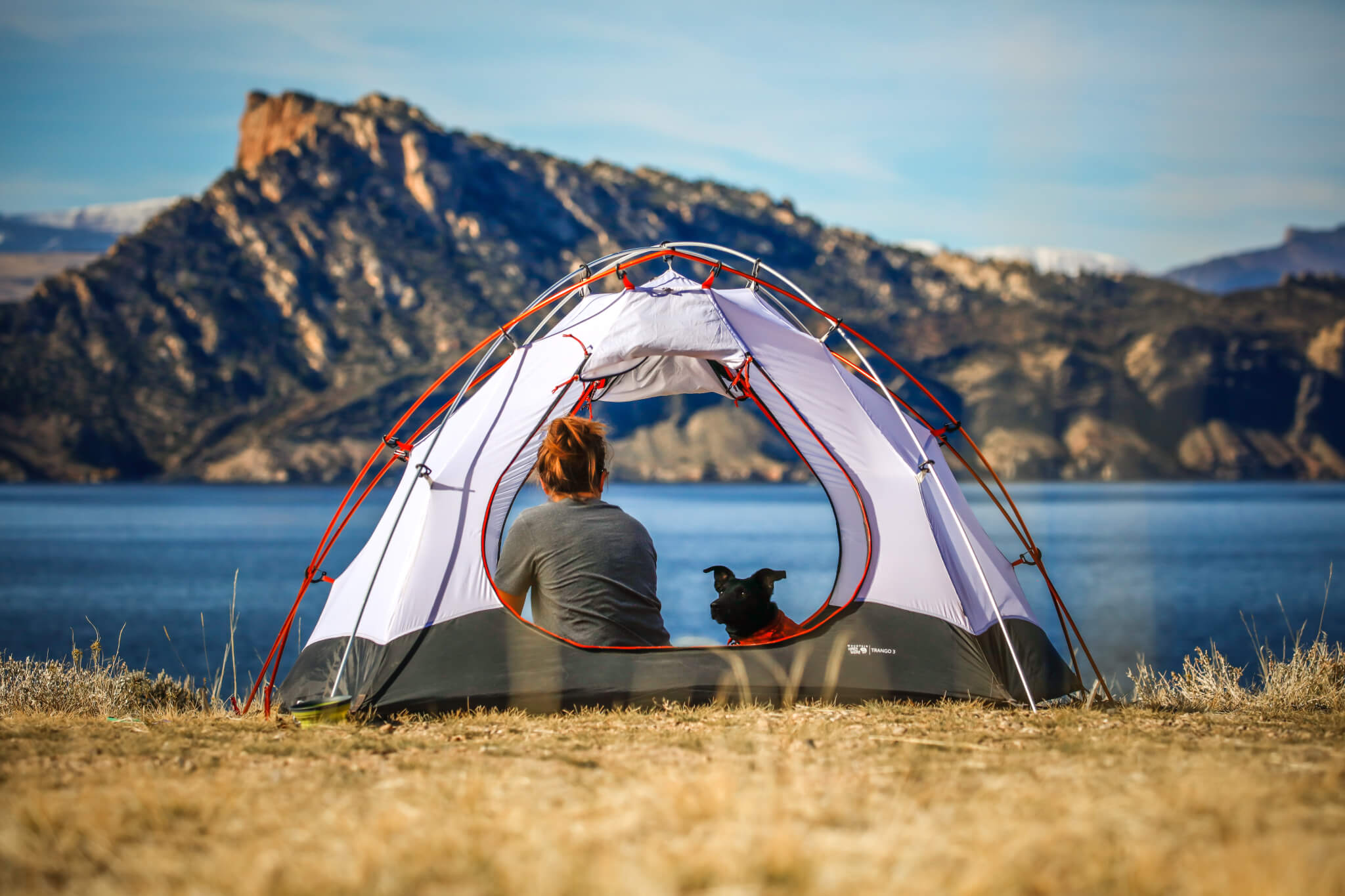 Girl and her dog camping.