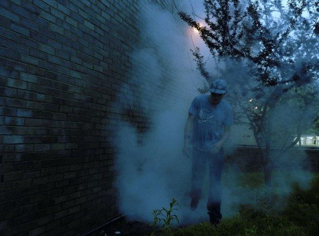 4_0webfacesmoke