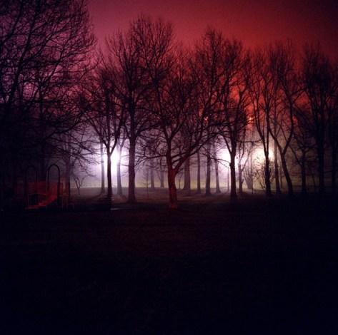 Friedman_night_11