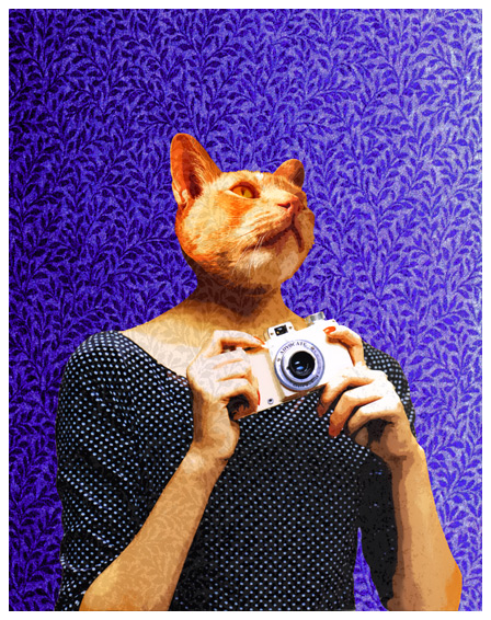 Woman - 26_illustr8a-illustration-portfolio-cat-with-camera