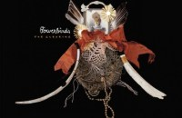 Bowerbirds-The-Clearing-