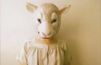 Gotch_Sheep