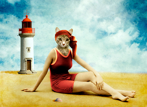 Martine Roche, cat by the sea, for-La-Marelle