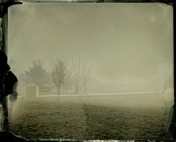 Rashod Taylor, mist on grass, 8x10 tintype