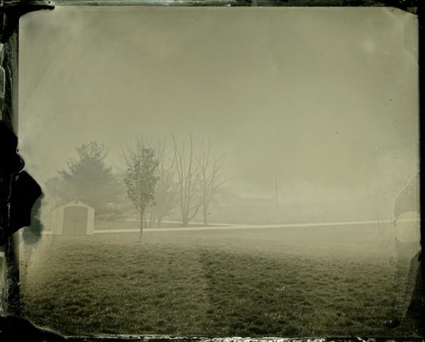 Rashod Taylor, mist on grass, 8x10 tintype