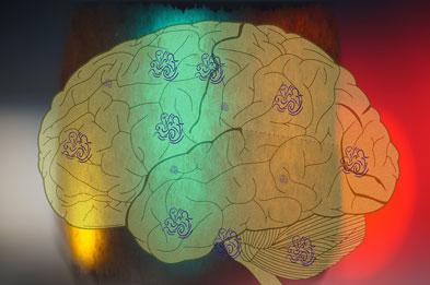 brain-color-fleurs-sm