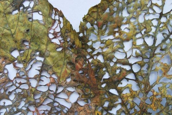 Linden Leaf Rag detail