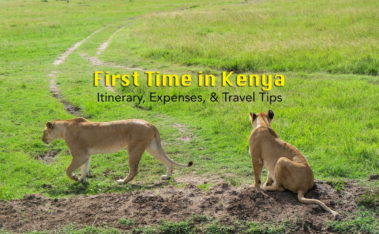 First Time in Kenya: What to Expect, Itinerary, Expenses, and Travel Tips