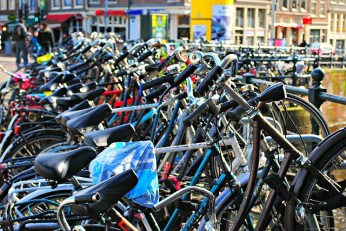 EVERYONE cycles in Amsterdam, so why not give it a go!