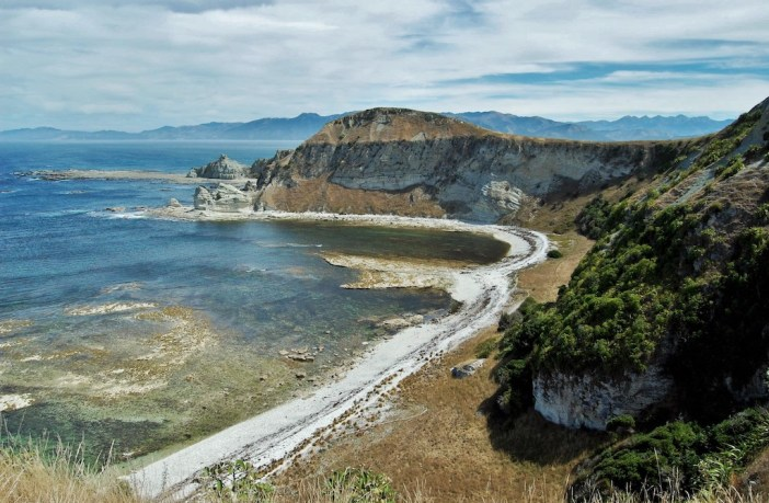 Kaikoura in New Zealand is famed for being an amazing Whale Watching spot. But there are plenty of other things to do and see too! Get inspired here.