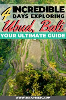 Planning a trip to Ubud? This spot is Bali's cultural capital and somewhere you can't miss out on. Here's my guide to spending 4 days in Ubud and your 4 days Ubud itinerary. #ubud #bali #baliguide #4daysinubud #indonesia
