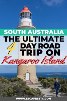 Are you looking for the best place to visit in South Australia? Kangaroo Island has so much to offer! From incredible wildlife, pristine beaches, rugged coastline and insanely good local food and wine, it's somewhere you cannot miss. Here's my guide to the top things to do on Kangaroo Island and my ultimate 4 day Kangaroo Island itinerary road trip. #kangarooisland #southaustralia #southaustralia #visitkangarooisland #visitsouthaustralia #backpackingaustralia #australiaroadtrips #topplacesinaustralia