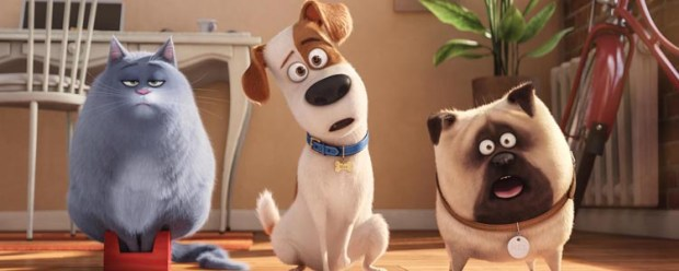 Comme des Bêtes - The Secret Life of Pets (2)