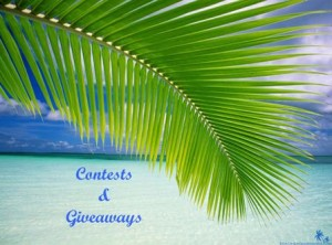 contests and giveaways 448