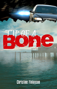Tip of a Bone 9781591934394 cover image copy