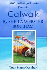 CATWALK SMALL BANNER