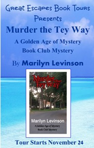 murder the tey way SMALL BANNER