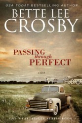 Passing_Through_Perfect_-_Ebook
