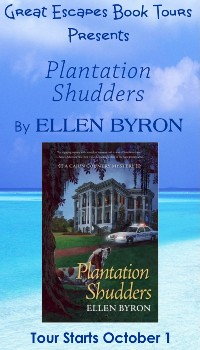 PLANTATION SHUTTERS SMALL BANNER