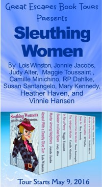 SLEUTHING WOMEN small banner
