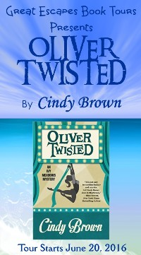 OLIVER TWISTED small banner