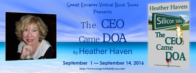 the ceo came doa large banner640
