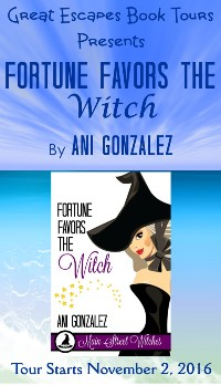new-fortune-favors-the-witch-small-banner