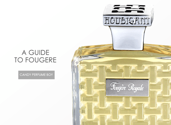 A Guide to Fougère
