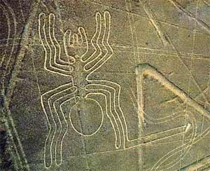 Resultado de imagen para Nazca dibujos