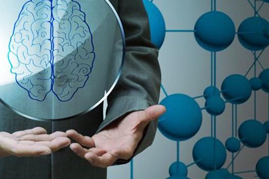 Curso Online de NeuroEstrategia