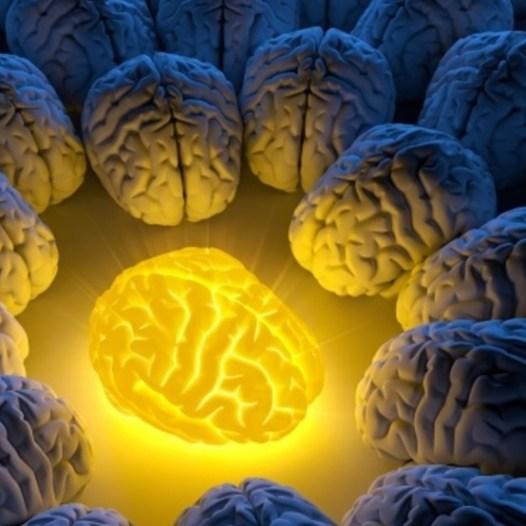 Curso de Experto en Neuroliderazgo de Equipos